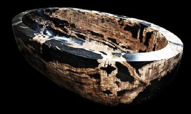 Gỗ hoá thạch là gì, có ý nghĩa phong thuỷ ra sao mà được giới đại gia săn lùng? - Ảnh 3.