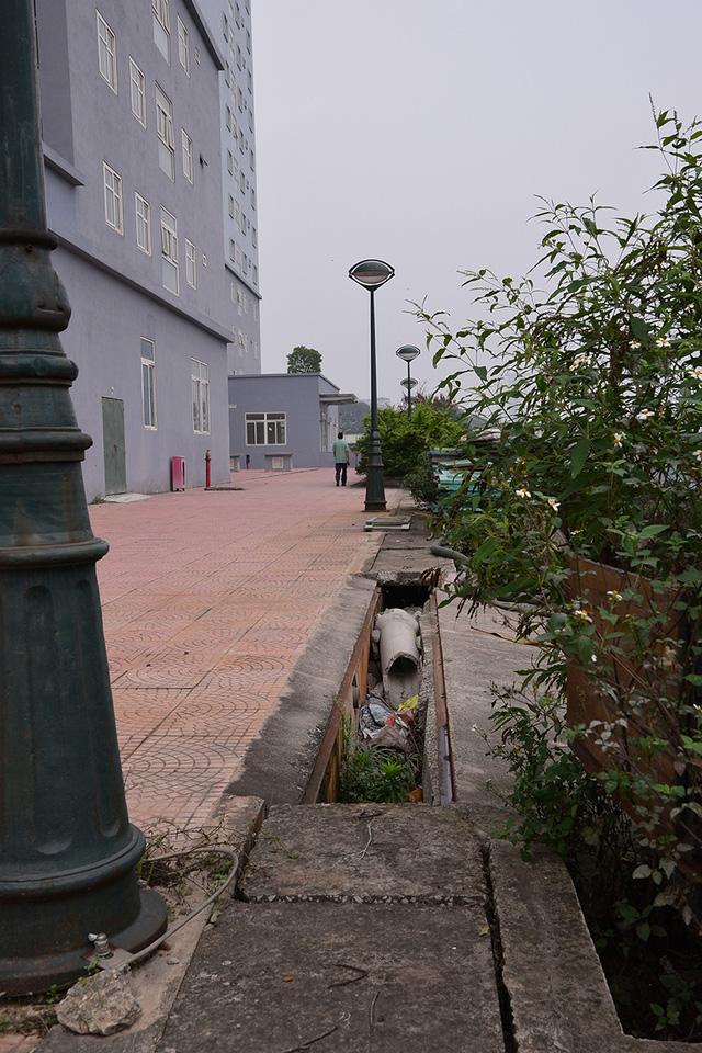 Khu chung cư view cực đẹp nhưng lại trở thành nơi hoang phế vì nhiều năm không có người ở - Ảnh 6.