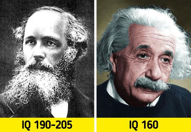 Hơn cả thiên tài: Những người có chỉ số IQ còn cao hơn Albert Einstein, và đây là những gì họ đã làm để kiếm sống - Ảnh 11.