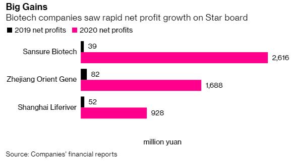 Covid-19 trở thành bàn đạp hoàn hảo, lợi nhuận ròng của một công ty Trung Quốc tăng hơn 6.500% - Ảnh 1.