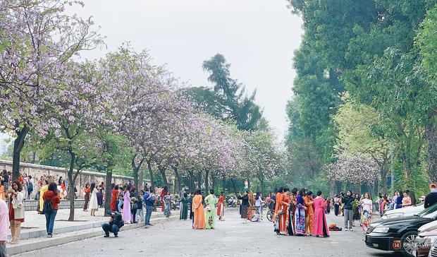 Hà Nội chiều Chủ nhật, dân tình rộn ràng chụp ảnh đông nghịt trên con đường hoa ban tím - Ảnh 5.