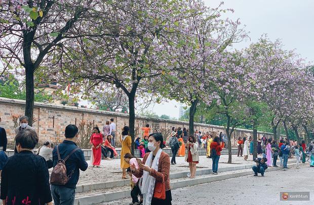 Hà Nội chiều Chủ nhật, dân tình rộn ràng chụp ảnh đông nghịt trên con đường hoa ban tím - Ảnh 6.