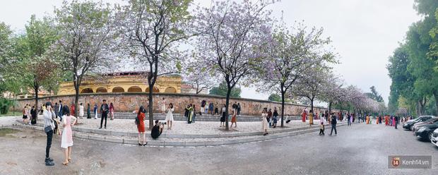 Hà Nội chiều Chủ nhật, dân tình rộn ràng chụp ảnh đông nghịt trên con đường hoa ban tím - Ảnh 7.
