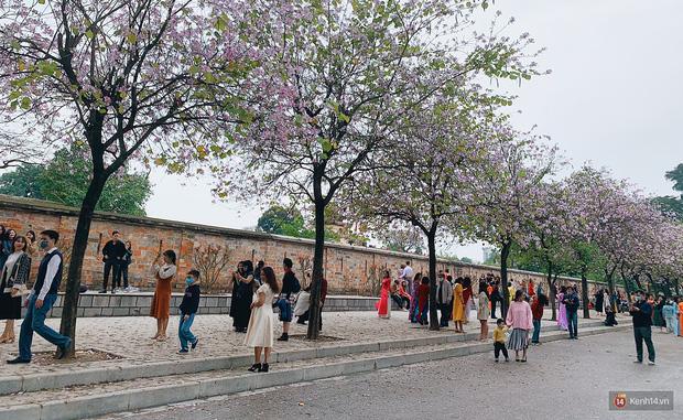 Hà Nội chiều Chủ nhật, dân tình rộn ràng chụp ảnh đông nghịt trên con đường hoa ban tím - Ảnh 8.
