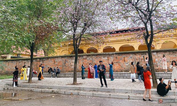 Hà Nội chiều Chủ nhật, dân tình rộn ràng chụp ảnh đông nghịt trên con đường hoa ban tím - Ảnh 9.