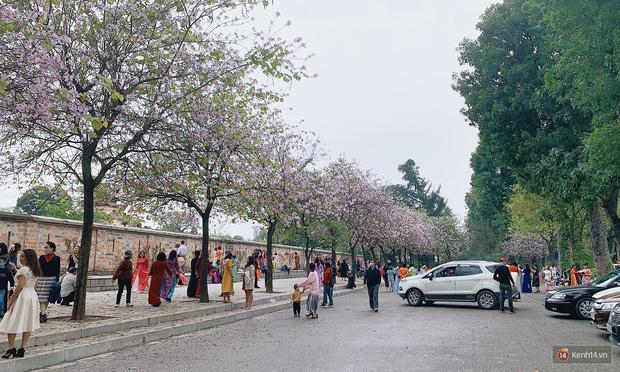 Hà Nội chiều Chủ nhật, dân tình rộn ràng chụp ảnh đông nghịt trên con đường hoa ban tím - Ảnh 10.