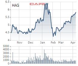 HAGL vẫn tăng kịch trần dù lỗ lũy kế sau kiểm toán tăng thêm hơn 1.200 tỷ đồng - Ảnh 4.