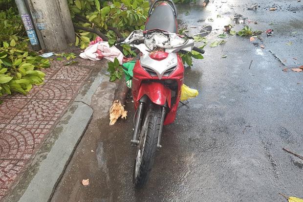 TP.HCM: Cây xanh ngã đổ ra đường, đè trúng tài xế Gojek đang chở khách nữ lưu thông - Ảnh 2.