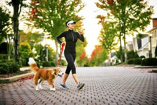 Dễ bắt đầu, duy trì đơn giản, nhưng bạn cần đi bộ như thế nào mới có hiệu quả với sức khỏe?  - Ảnh 3.