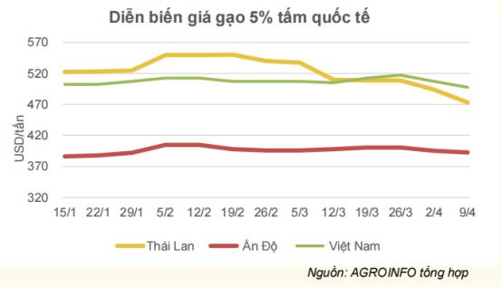 Thị trường xuất khẩu gạo lớn nhất của Việt Nam giảm mạnh - Ảnh 2.