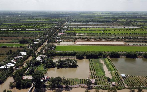 Ngân hàng rao bán khoản nợ trăm tỷ của Nông trường Sông Hậu - Ảnh 1.