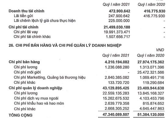 Ghi nhận doanh thu từ bán đất nền, Phát Đạt (PDR) báo lãi sau thuế quý 1 đạt 251 tỷ đồng - Ảnh 2.