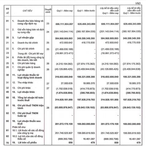 Ghi nhận doanh thu từ bán đất nền, Phát Đạt (PDR) báo lãi sau thuế quý 1 đạt 251 tỷ đồng - Ảnh 1.