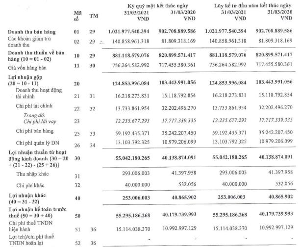 Gia tăng quảng cáo, Pinaco (PAC) báo lãi quý 1 tăng 38% so với cùng kỳ - Ảnh 1.
