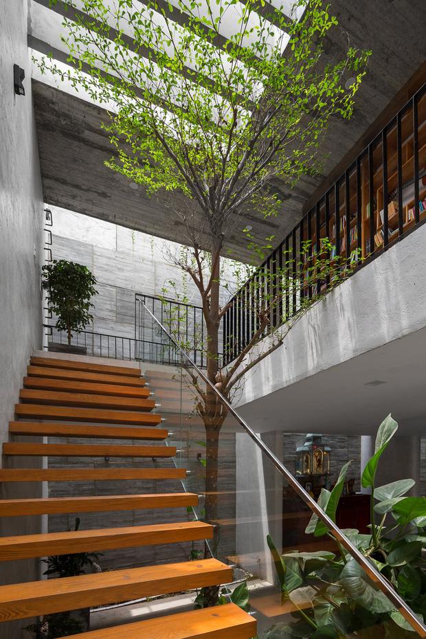 Xây nhà 2,5 tỷ với vật liệu hoàn thiện từ 100% bê tông, cặp vợ chồng khiến người bạn nước ngoài thích thú phải thuê ngay một phòng - Ảnh 3.