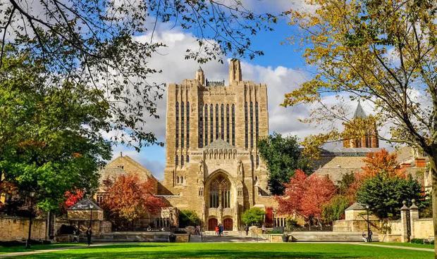 Đại học nào sản sinh nhiều tỷ phú nhất thế giới? - Ảnh 4.