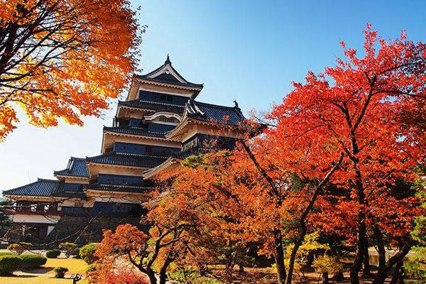 Nhật Bản có một tỉnh mệnh danh là vùng đất của người sống thọ nhất thế giới: Bí quyết của họ là 4 kiểu ăn uống mà ai cũng có thể học theo - Ảnh 1.
