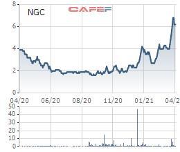 Lỗ lũy kế vượt quá số vốn điều lệ thực góp, Ngoprexco (NGC) có khả năng bị hủy niêm yết - Ảnh 1.