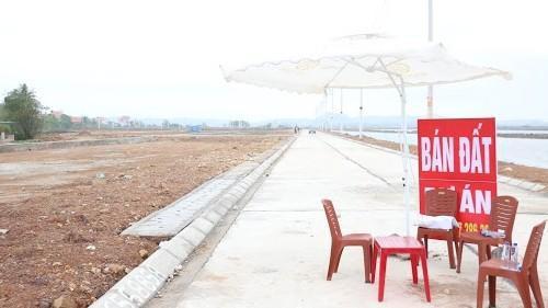 Vân Đồn (Quảng Ninh): Cấm cán bộ buôn bán, môi giới và tiếp tay cho đầu cơ đất đai  - Ảnh 2.