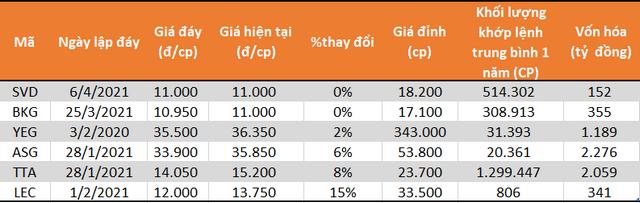Những cổ phiếu hiếm hoi vẫn ở đáy dù VN-Index liên tục lập đỉnh - Ảnh 1.