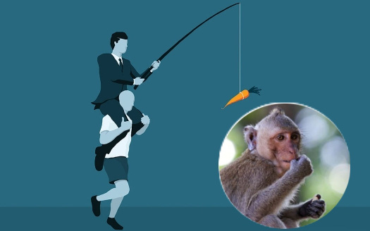 """Câu chuyện bán khỉ mua 1 lãi 5 và bài học: Đừng """"sáng mắt"""" trước những món hời tự nhiên, đồng tiền trên trời rơi xuống là thứ nguy hiểm nhất"""