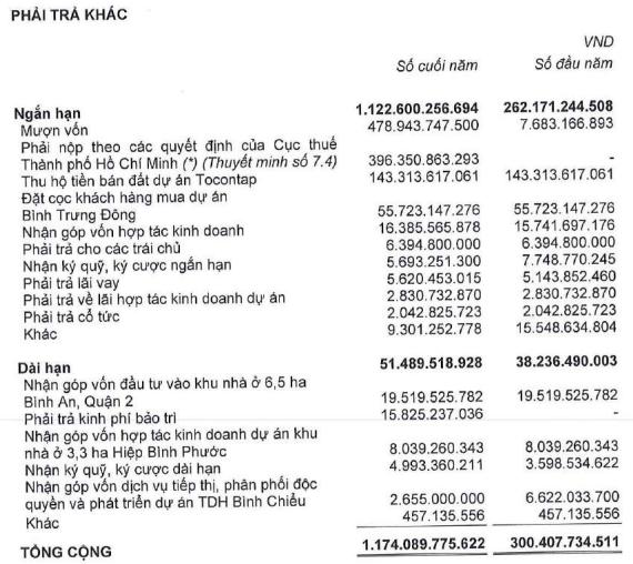 Thuduc House (TDH): Khoản phải tạm nộp 396 tỷ đồng truy thu thuế vẫn đang đánh giá và sẽ điều chỉnh khi có quyết định sau cùng - Ảnh 1.