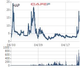 HAPACO (HAP) kỳ vọng lãi năm 2021 tăng trưởng hơn 220%, tăng vốn điều lệ lên 1.250 tỷ đồng - Ảnh 2.