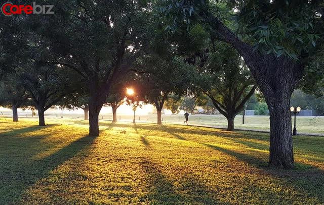 Những người kiên trì đi bộ mỗi ngày có tương lai về sau ra sao? 4 lợi ích thụ hưởng cả đời - Ảnh 2.