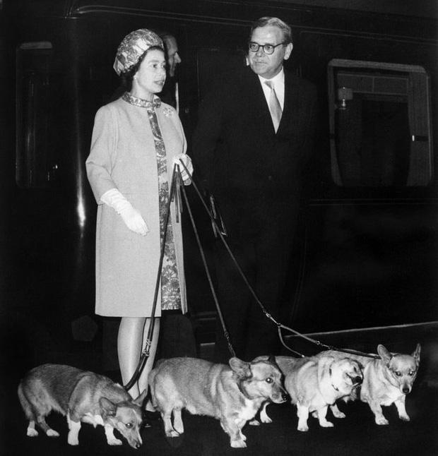 9 điều Nữ hoàng Anh Elizabeth II tuyệt đối không bao giờ làm: Vậy mới thấy Hoàng gia Anh nghiêm khắc đến mức nào - Ảnh 8.