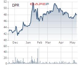 Cao su Đồng Phú (DPR) đưa gần 3 triệu cổ phiếu quỹ ra bán - Ảnh 1.