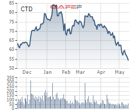 Coteccons (CTD): Liên tục giảm, cổ phiếu đã phá đáy tháng 10/2020 - Ảnh 1.