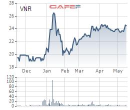 Vinare (VNR) triển khai phương án phát hành 19 triệu cổ phiếu thưởng - Ảnh 1.