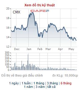 Camimex (CMX) chào bán 30 triệu cổ phiếu cho cổ đông hiện hữu, tăng vốn điều lệ gấp đôi - Ảnh 2.