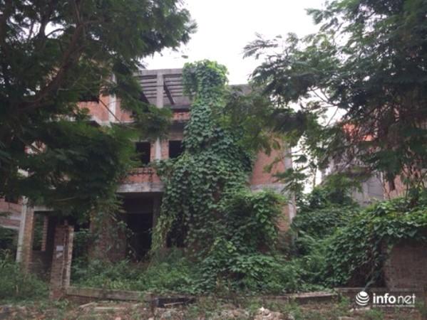 điểm mặt những khu biệt thự trăm tỷ bỏ hoang ở hà nội, có bị đánh thuế? - ảnh 3.