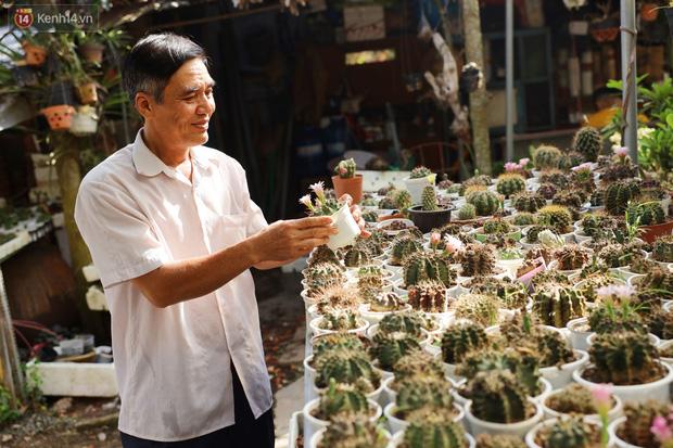 Hoa mắt với vườn xương rồng hơn 10.000 cây của chú Phúc miền Tây: Có loại sống đến năm 30 tuổi mới ra hoa rồi chết - Ảnh 5.