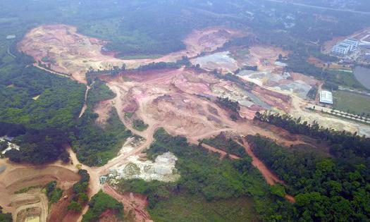 Phó Thủ tướng 'lệnh' xử lý dứt điểm việc xây biệt thự trên đất rừng ở Vĩnh Phúc - Ảnh 1.