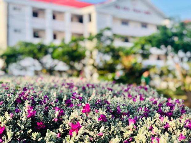 Việt Nam có một ngôi trường với kiến trúc độc đáo như resort cao cấp nhưng học phí thì quá dễ chịu, Hoa hậu trái đất cũng từng ghé thăm - Ảnh 10.