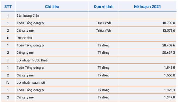 PV Power dự kiến triển khai đầu tư Nhà máy điện Nhơn Trạch 3&4, đặt kế hoạch lãi trước thuế 1.549 tỷ đồng trong năm 2021 - Ảnh 1.