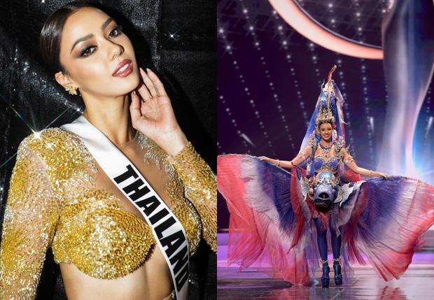 Sự thật gây tranh cãi về Miss Universe: Hậu trường nặng mùi, thí sinh không cần tài năng và phải mang theo thuốc trĩ vì lí do này - Ảnh 8.
