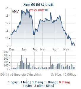 Y tế Việt Mỹ (AMV) triển khai phương án chào bán 40 triệu cổ phiếu - Ảnh 1.