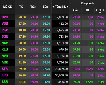 VnIndex tăng mạnh 17 điểm, cổ phiếu ngân hàng tím lịm - Ảnh 1.