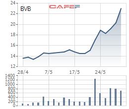 Ngân hàng Bản Việt (BVB) bất ngờ điều chỉnh room ngoại từ 30% xuống 5% - Ảnh 1.