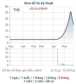 Những cổ phiếu tăng bằng lần trong tháng 5: Quán quân thuộc về cổ phiếu tăng gấp 9 lần trong tháng - Ảnh 4.