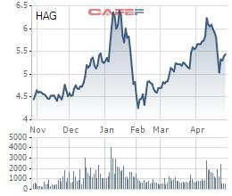 Hoàng Anh Gia Lai (HAG): Tiếp tục bán thảo thuận 80 triệu cổ phần tại HAGL Agrico, dự thu hàng trăm tỷ nhằm tái cấu trúc nợ ngân hàng - Ảnh 1.