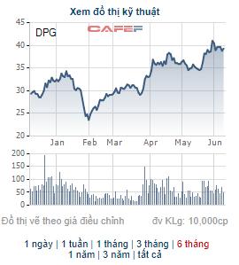 Đạt Phương (DPG) triển khai phương án phát hành 18 triệu cổ phiếu thưởng, tỷ lệ 40% - Ảnh 2.