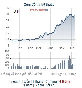 Quốc tế Sơn Hà (SHI) thông qua phương án phát hành hơn 9 triệu cổ phiếu trả cổ tức - Ảnh 1.