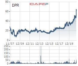 Cao su Đồng Phú (DPR) dự kiến phát hành cổ phiếu thưởng tăng vốn điều lệ tỷ lệ 100% - Ảnh 1.