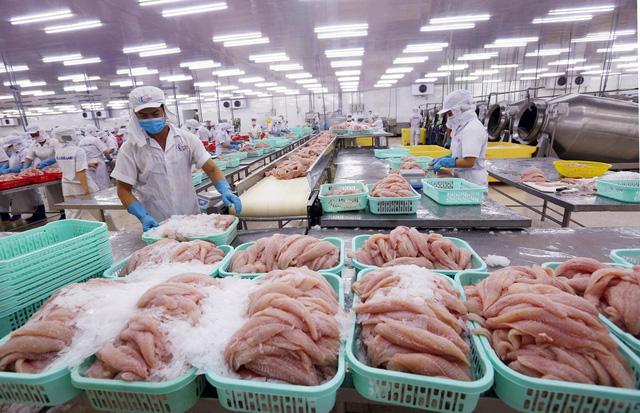 Trung Quốc tạm ngừng nhập khẩu thực phẩm đông lạnh từ Việt Nam và 10 quốc gia tại cảng Trạm Giang - Ảnh 1.