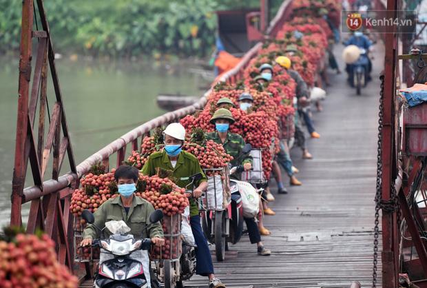 Bắc Giang: Kiếm tiền triệu từ việc đẩy xe chở vải lên dốc cầu phao trong mùa thu hoạch - Ảnh 13.
