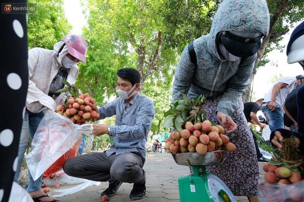 Bác sĩ bị vợ cách ly vì về Bắc Giang gom hàng trăm tấn vải mang xuống Hà Nội bán giúp bà con - Ảnh 3.